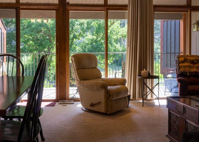 Big Deck wtih Seating & Electric Grill