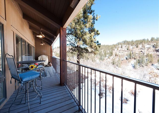 Large Back Deck with Views