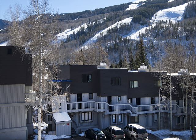 Looking from living room deck towards ski mountain.