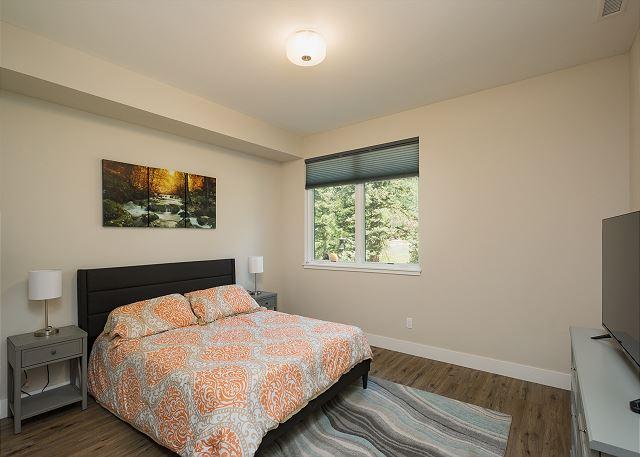 3rd Bedroom - Queen bed and TV