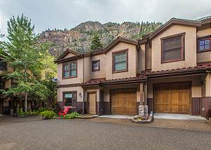 **New Listing** - Close to Ouray Hot Springs Pool - Fireplace!