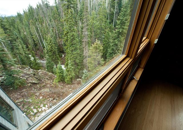 View of the creek from the Main Living Space window