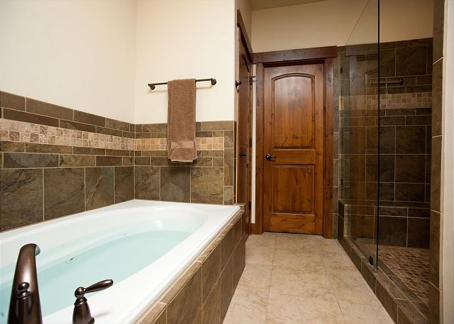 Master Bathroom - Tub and Shower