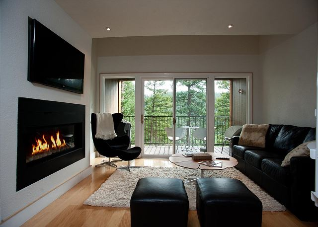Main living space with gas fire place
