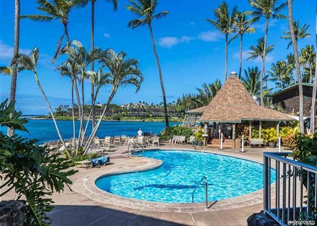 Napili Shores Garden View Studio Suite on the Renowned Napili Bay with AC