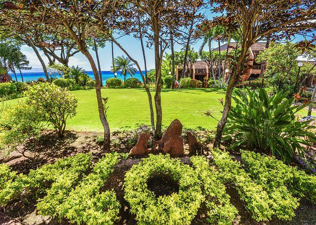 Lush tropical grounds at the Kuleana