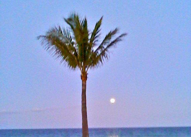 Full Moon!