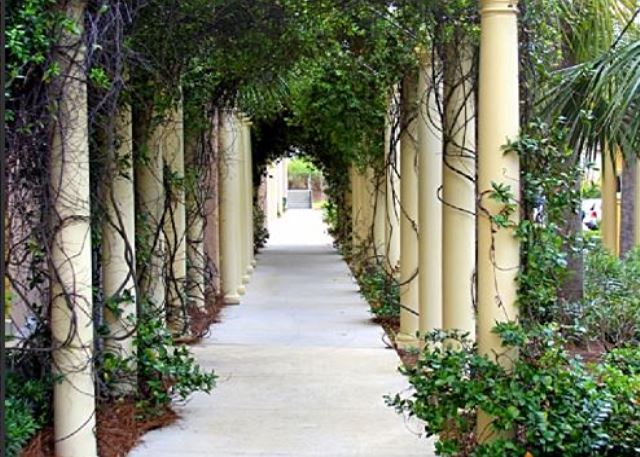 Romantic archway by the gym entry