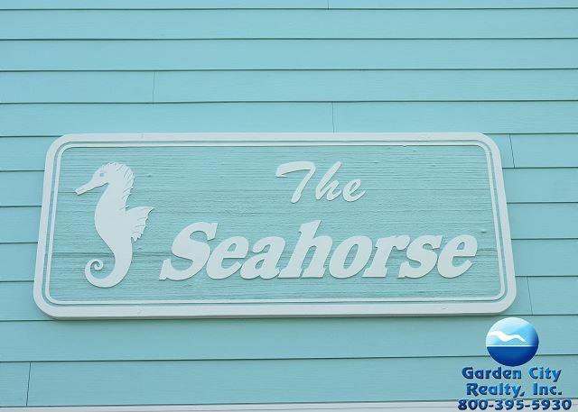 Sea Horse 103