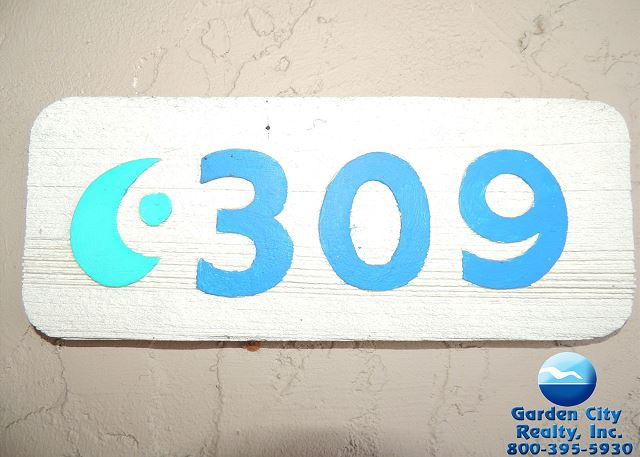SurfMaster 309
