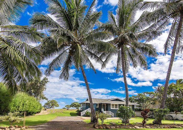 Coconut trees line the property of this beautiful ocean front beach home.