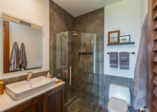 Master Bath with New Walk-In Shower