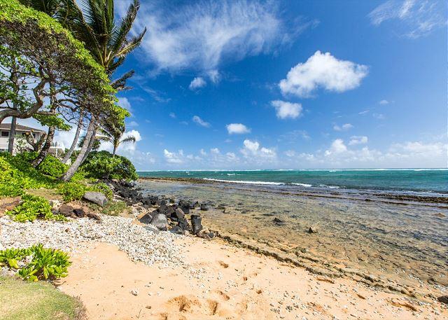 Coconut coast shore
