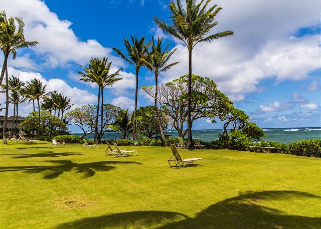 The grounds at your oceanfront condo in Kapa'a.