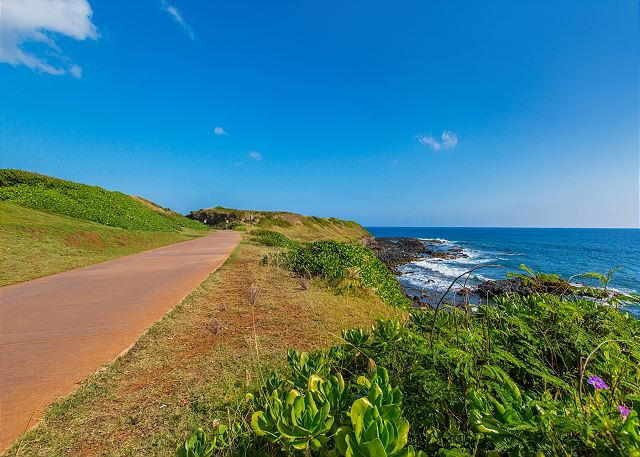 The Path that goes by the Coast is a great place to spend the day exploring the Coconut Coast by foot or bike.
