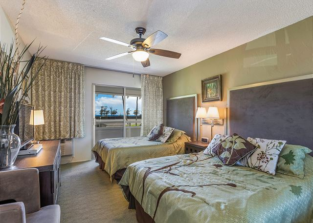 Bedroom with AC, 2 Full Size Beds and TV