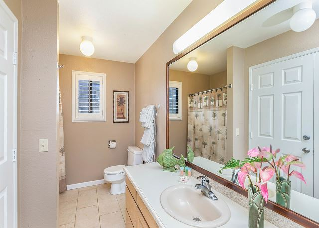 Guest Bathroom with Shower Tub