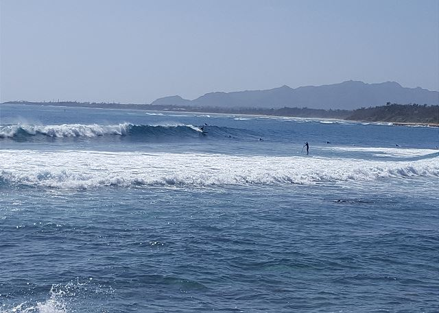 Surfers on the Coconut Coast