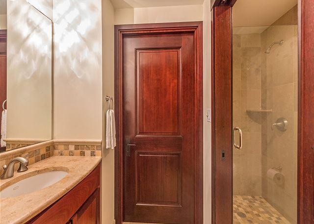 Master Bath Shower with Spa Tub