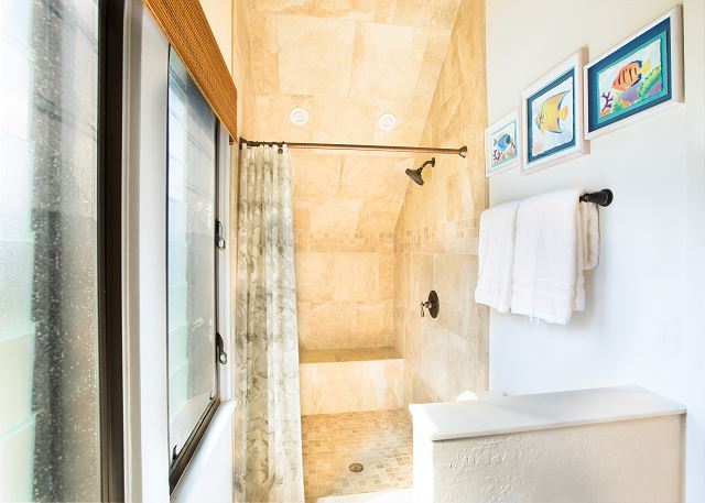Upstairs master walk-in shower