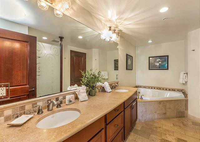Master bathroom with spa tub