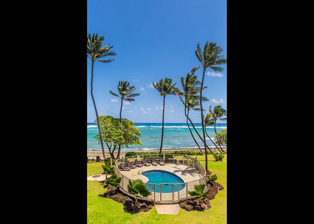 Oceanfront & Pool View from Lanai