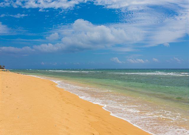 Walk to Wailua or Coconut Beach