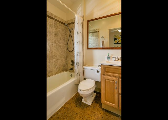 Bedroom Suite Bathroom with Tub Shower