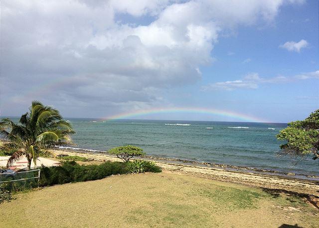 Hawaiian Rainbow from Kauai Kailani Grounds