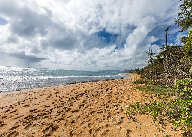 Coconut Coast Beaches