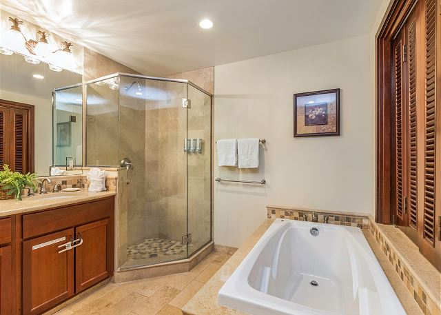 Second bathroom with spa tub and shower