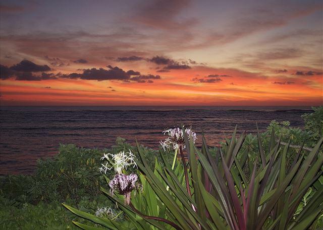 Sunset at Niulani
