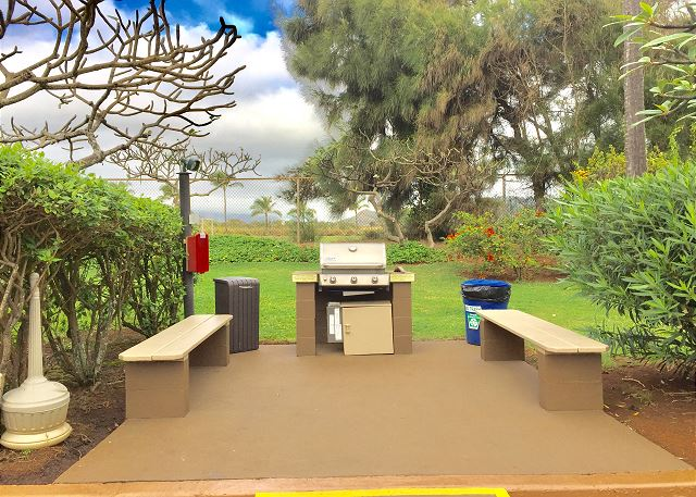 One of two area with BBQ Grills
