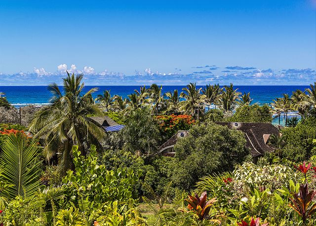 Ocean Views of  the blue Pacific Ocean from your private retreat