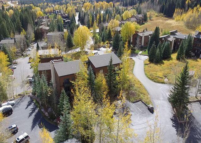 Timber Falls complex