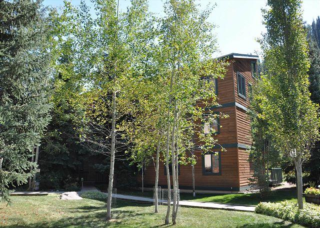 Timber Falls Building 15