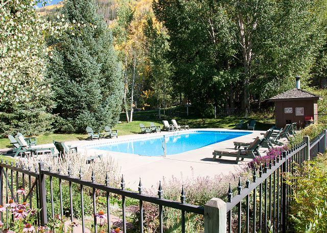 Community summer pool