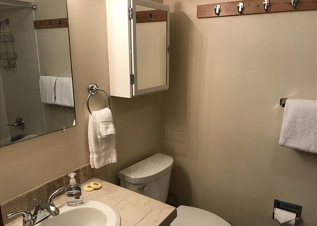 Ground Level Bathroom