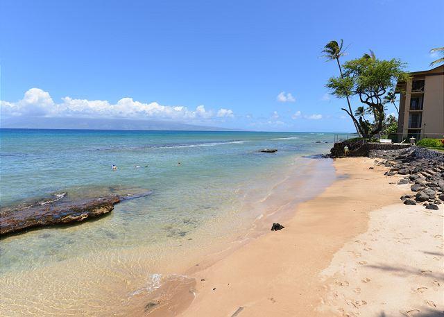 Hale Kai # 101 - adjoining beach to the north