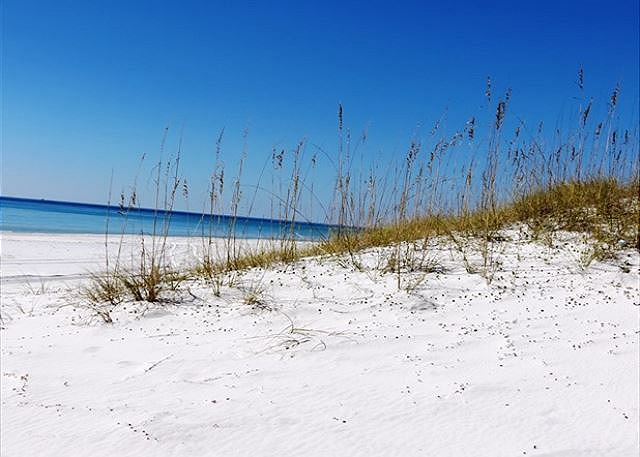 Sugary white beaches of Seagrove Beach