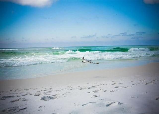 Emerald Green Waters and Sugary White Sand!