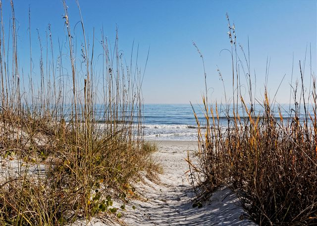 Roadrunner 5, Oceanfront, 7 Bedrooms, Private Pool, Sleeps 20 - So close to you - HiltonHeadRentals.com