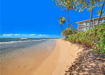 Kauai Kailani 306 120