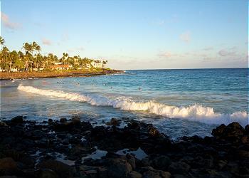 Kauai Prince Kuhio 315 140