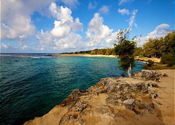 Royal Palm Suite at Poipu Beach Estates 150