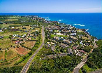 Waikomo Stream 503 280