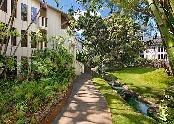 Waikomo Stream 503 170