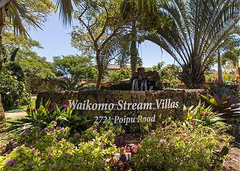 Waikomo Stream 503 160