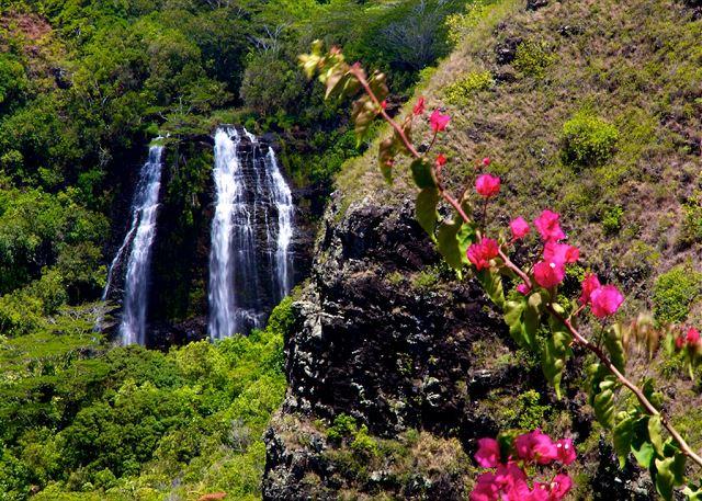 Kauai Prince Kuhio 104 120