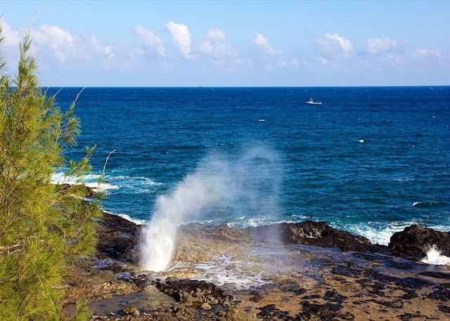 Kauai Prince Kuhio 104 100
